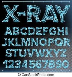X-ray Font Vector. Transparent Roentgen Alphabet. Radiology...