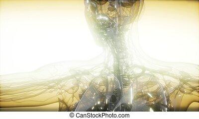 X-Ray Image Of Human Body