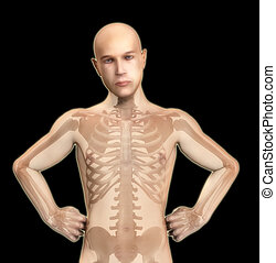 X Ray Man - A medical image showing an X rayed man.