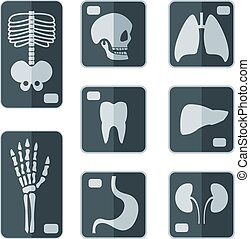 Set of X-rays flat icon