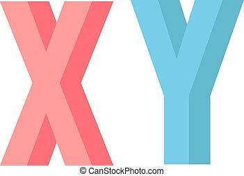 X Y chromosome vector illustration.