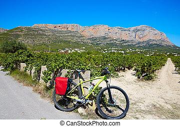 xabia, javea, montgo, vignobles, faire vélo, mtb