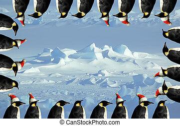 xmas, cartão, pingüim