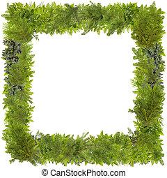 Xmas fir tree photo frame