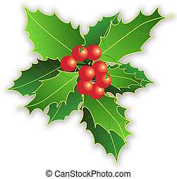 xmas leaves and berries illustration