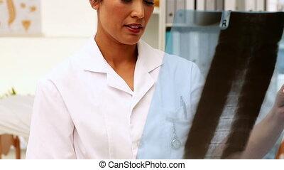 xray, examiner, infirmière