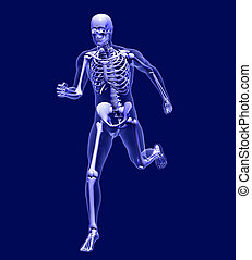 Xray Man Running - 3D render simulating an Xray image of a...