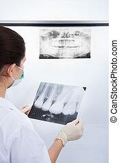 xray, untersuchen, zahnarzt