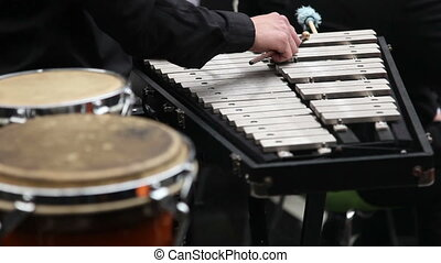 Xylophone - Musician playing on xylophone sticks