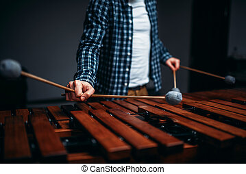 Xylophone player hands with sticks, wooden sounds. Musical...