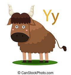 Y alphabet vector animal