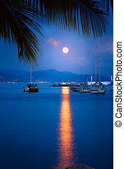 yacht harbor in purple moon light, Tropical travel