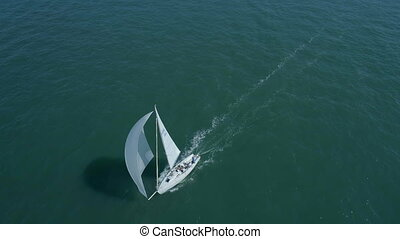 Yacht in a Sailing Race