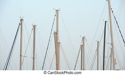 Yacht masts against clear blue sky - Many yacht masts are...