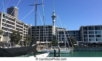 Yacht mooring Auckland waterfront