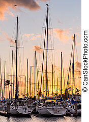Yachts at sunset at the Ala Wai Small Boat Harbor in Honolulu, Hawaii with a small plane flying overhead