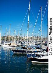 Yachts & boats in a harbour.