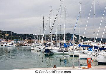 yachts in marina - thy yachts in a marina
