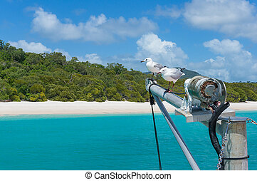 Yachts mast with seagulls and beautiful tropical beach on...