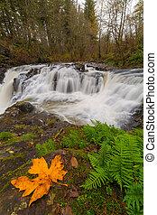 Yacolt Creek Falls in Fall Season