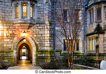 Yale university - Yale University campus at evening New...