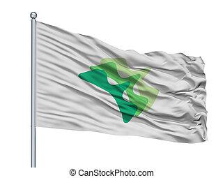 Yamanashi City Flag On Flagpole, Japan, Yamanashi Prefecture...