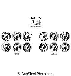 yang, símbolo, yin, bagua, dos, variante, arrangement., ...