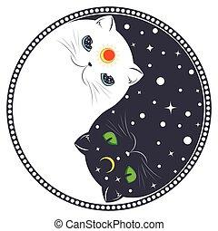 yang, yin, chats
