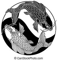 yang, znak, yin, dva, fishes., koi