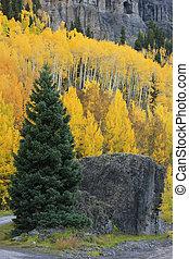 Yankee Boy Basin, Mount Sneffels wilderness, Colorado, USA