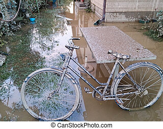 yard with ruined bicycle after a flood