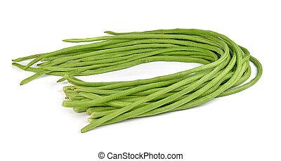 yardlong bean isolated on white background.