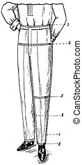 yardsticks for the removal of men's trousers - an...