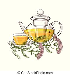 yarrow tea illustration - yarrow tea in teapot illustration ...