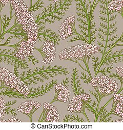 yarrow vector pattern - yarrow flowers vector pattern on ...