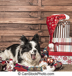 Yawning dog Christmas postcard