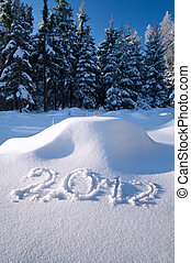 Year 2012 written in Snow in Winter Forest
