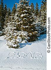 Year 2013 in winter landscape