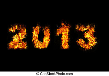 Year 2013 on fire