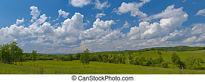 Year landscape with meadow and cloudy sky