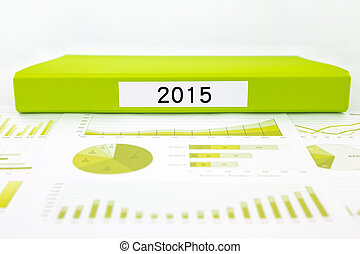Year number 2015, graphs, charts and business budget planning
