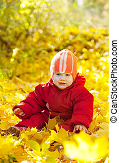 year-old child   sitting on maple leaves