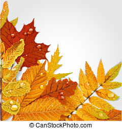 Yellow and green autumn leaves background 1
