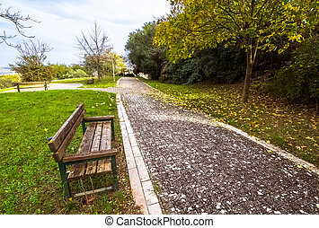 yellow and green colorful leaves autumn colors in the park outdoor with a road and wood bench