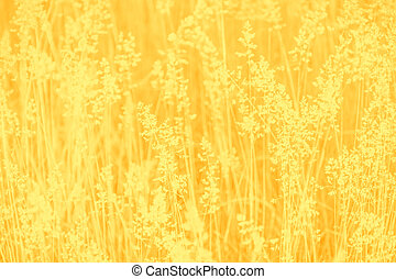 Yellow and mustard color abstract background with grass pattern