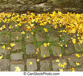 yellow autumn leaves laying on cobblestone near a vintage wall