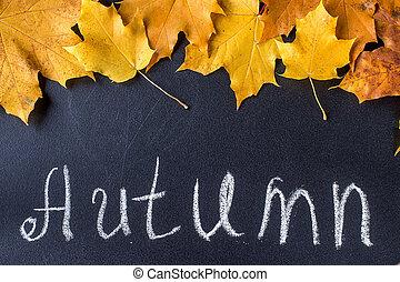 Yellow autumn leaves on black chalkboard background.