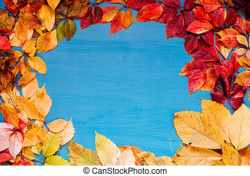 yellow autumn leaves on grey blue background z