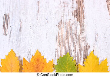 Yellow autumnal leaves with copy space for text on wooden background