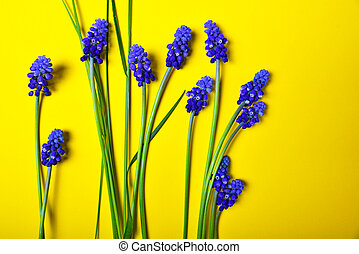 Yellow background with blue flowers